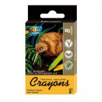 8 Mini Crayon Box