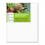 Learner Canvas 40x50cm Single Thick